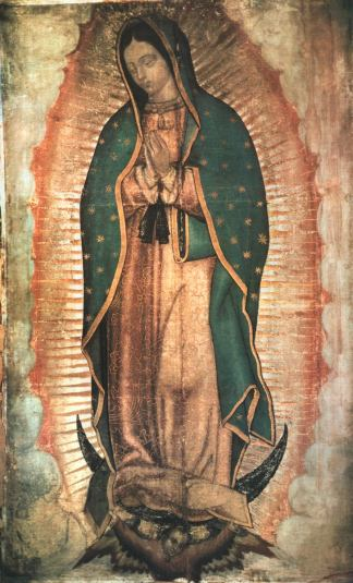 Image result for our lady of guadeloupe